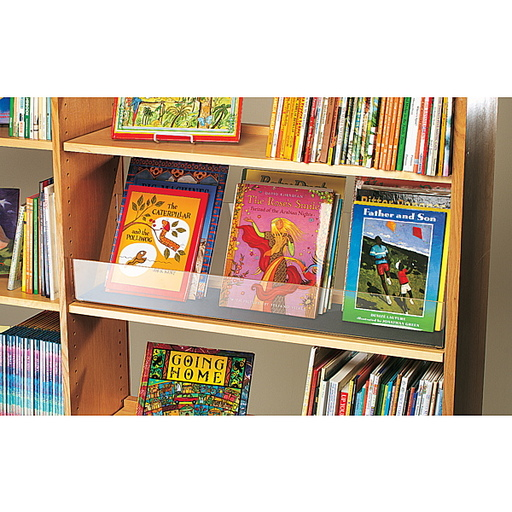 DH- Library for Littles- Supporting our Newest Readers