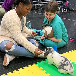Bunny Besties Event Helps Alleviate Stress
