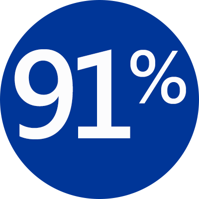 91 percent blue icon