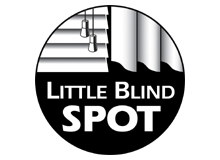 Little Blind Spot
