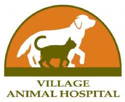 VIllage动物医院标志